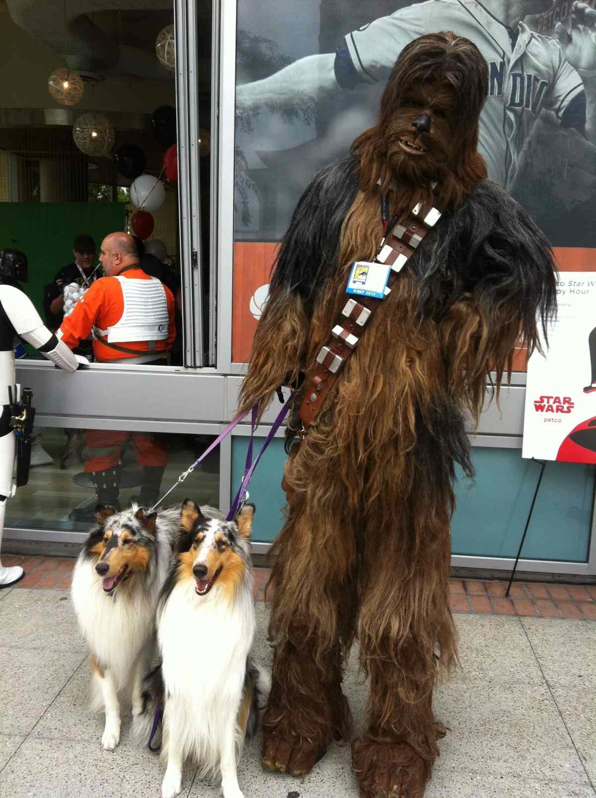 wookie dog walker