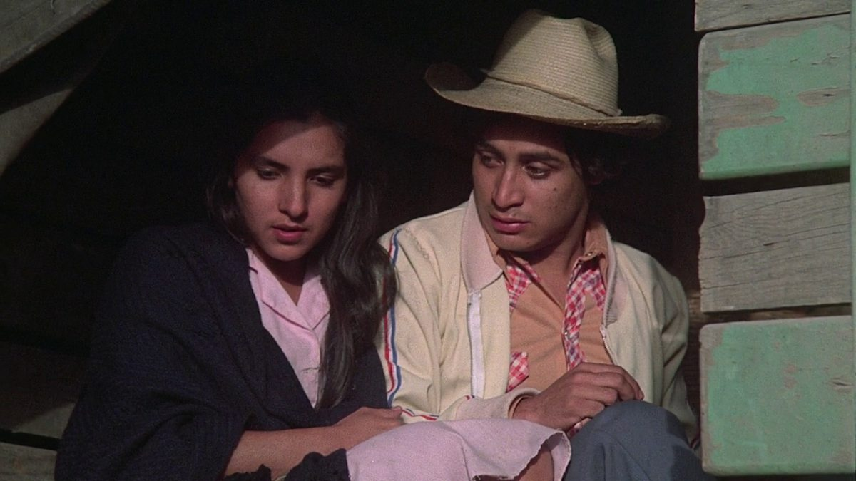el norte movie essay Read about the el norte dvd and a booklet featuring a new essay by novelist héctor stay in the know with the latest movie news and cast interviews at.