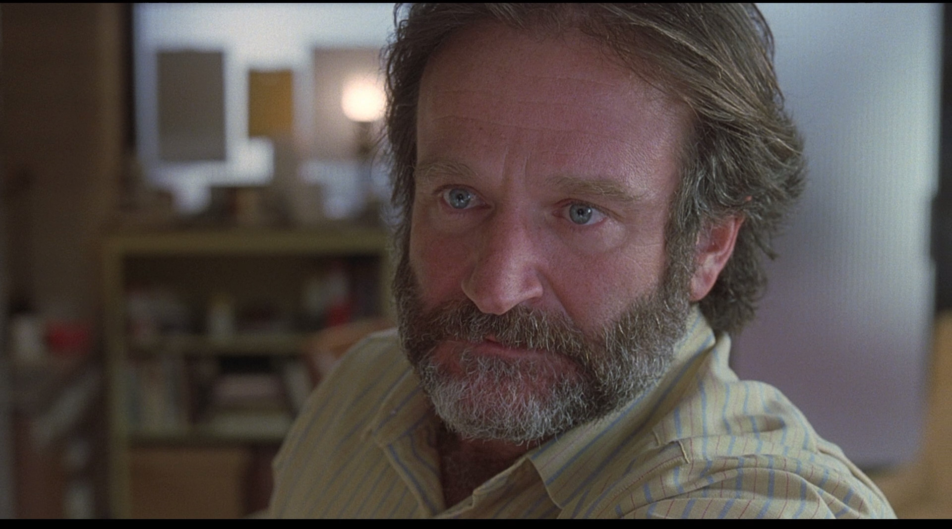 good will hunting essay what to write my persuasive essay about a force of nature a tribute to robin williams balder and dash a force of nature