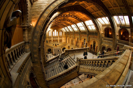 grand_staircase_NHM.jpg