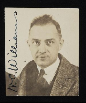 501px-William_Carlos_Williams_passport_photograph_1921.jpg