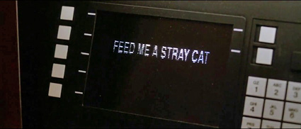 american_psycho_feed_me_stray_cat.jpg