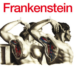 frankenstein_logo260pix.jpg