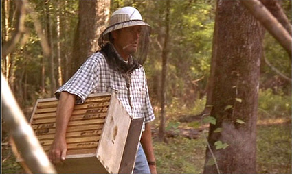 ulees_gold_fonda_beekeeping.jpg