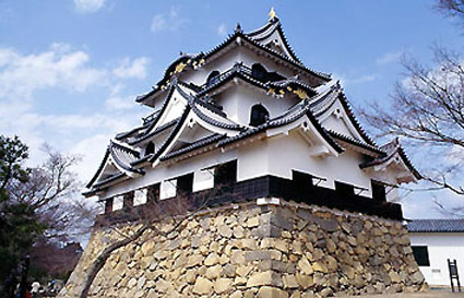 ichimei_hikone_castle.jpg
