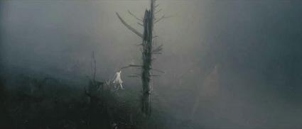 antichrist_myst_woods.jpg