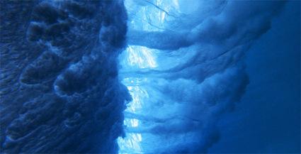 tree-of-life-blue-wave.jpg