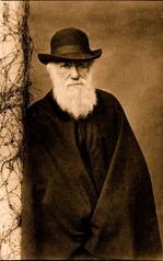 3_Darwin.jpg