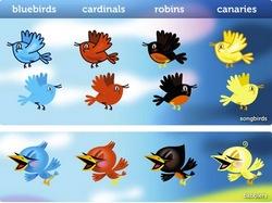 Twitter_Birds_preview.jpg