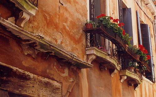 venice_flowers.jpg