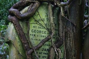 1562308-1-gravestone-in-highgate-cemetery.jpg