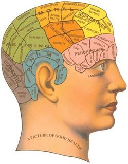 phrenology-2.jpg