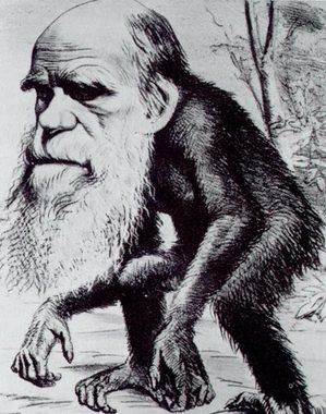 darwinape.jpg