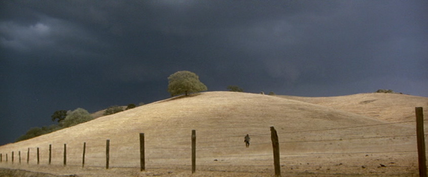 scarecrow1.jpg