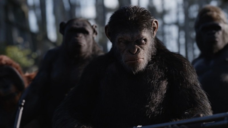 Primary war for the planet of the apes 1 cfk0110 v0165.0008 mkt rgb