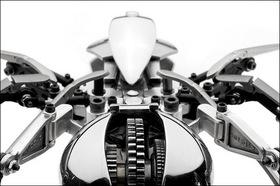 steel_widow_close-up1.jpg