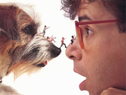 honey-I-shrunk-the-kids260pix.jpg