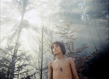 shadows-of-forgotten-ancestors_Ivan_forest-fog.jpg