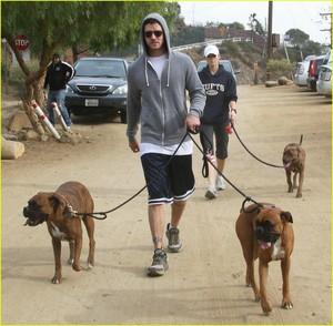 justin-timberlake-jessica-biel-dog-walkers-02.jpg