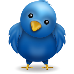 032010_twitter_prank_bird.png