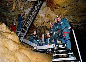 cave-of-forgotten-dreams-herzog-2.jpg