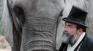 One_Lucky_Elephant.jpeg