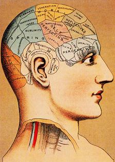 phrenology-1.jpg