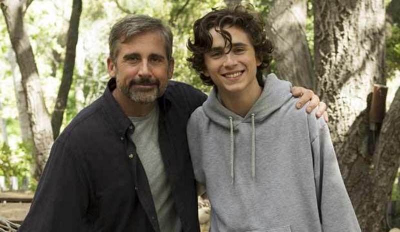 Primary beautiful boy carell chalamet