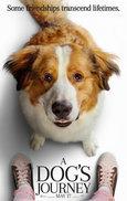 Thumb dog poster