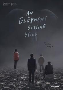 Widget elephant sitting poster