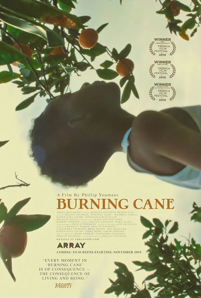 Burning Cane movie poster