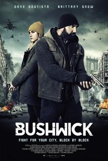 Widget bushwick ver5