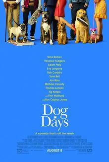Widget dog poster