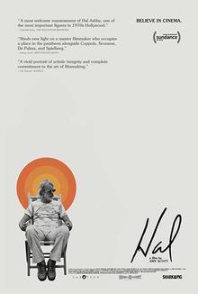Widget hal poster
