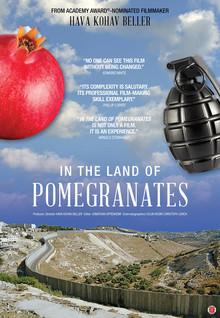 Widget pomegranates poster