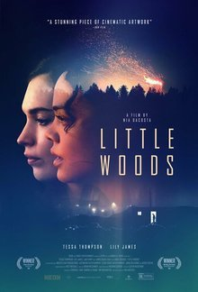 Widget little woods poster