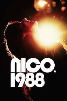 Widget nico poster