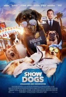 Widget show dogs