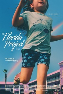 Widget florida project
