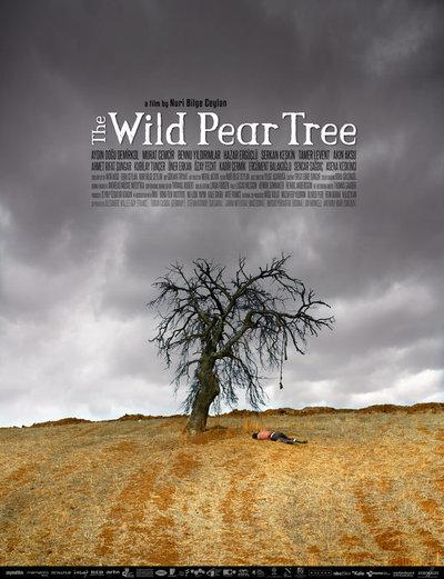 野梨树电影海报
