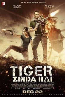 Widget tiger zinda