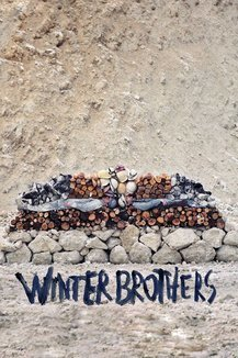 Widget winter bros poster
