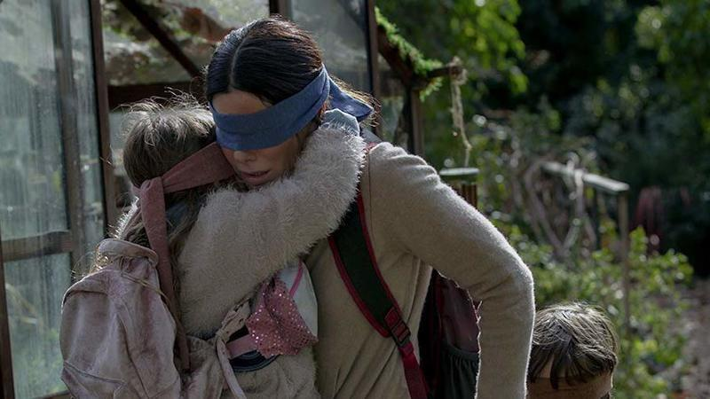 Primary bird box image 5