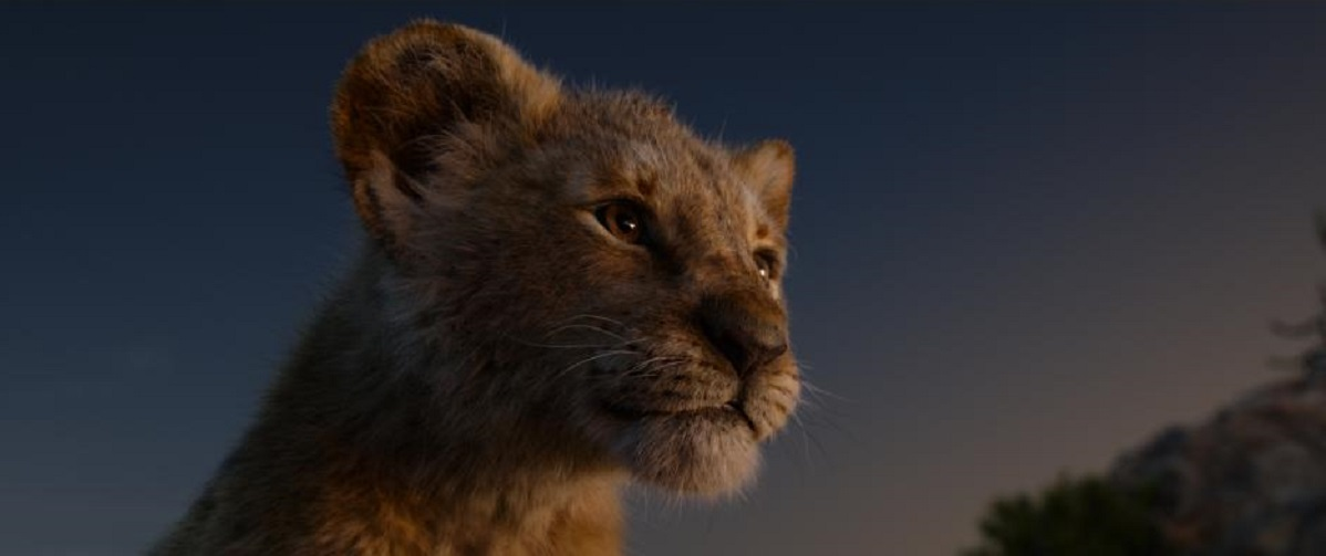 The Lion King Movie Review Film Summary 2019 Roger Ebert